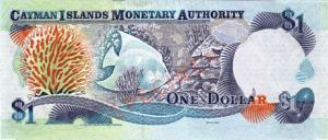 دولار جزر الكايمان